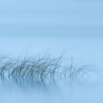 Elkwater-Lake-Grass-Reflection