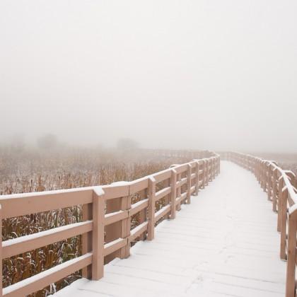 Elkwater-Lake-Pathway