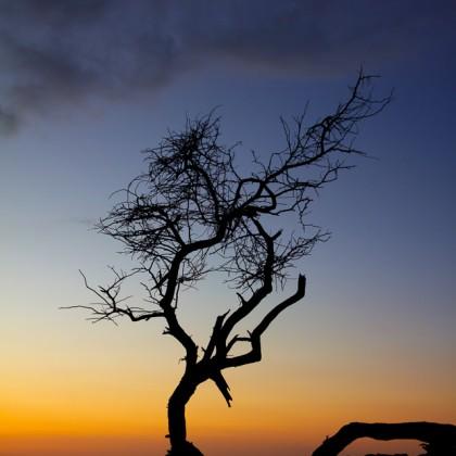 Maui-Makena-Sunset-Silhouette