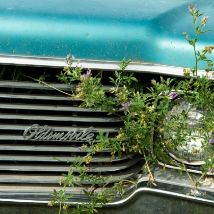 Oldsmobile-Grill