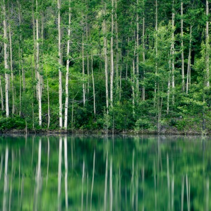 Wedge-Pond-Trees-Reflection